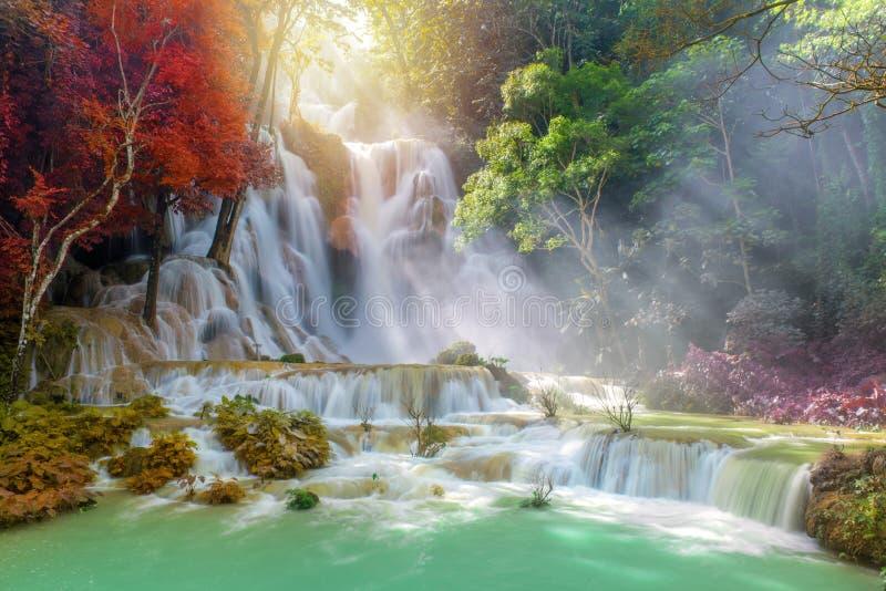 Cascata in foresta pluviale & in x28; Tat Kuang Si Waterfalls al praba di Luang immagine stock