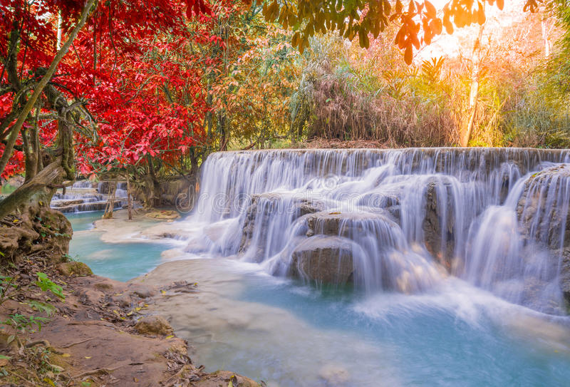 Cascata in foresta pluviale (Tat Kuang Si Waterfalls al praba di Luang immagini stock