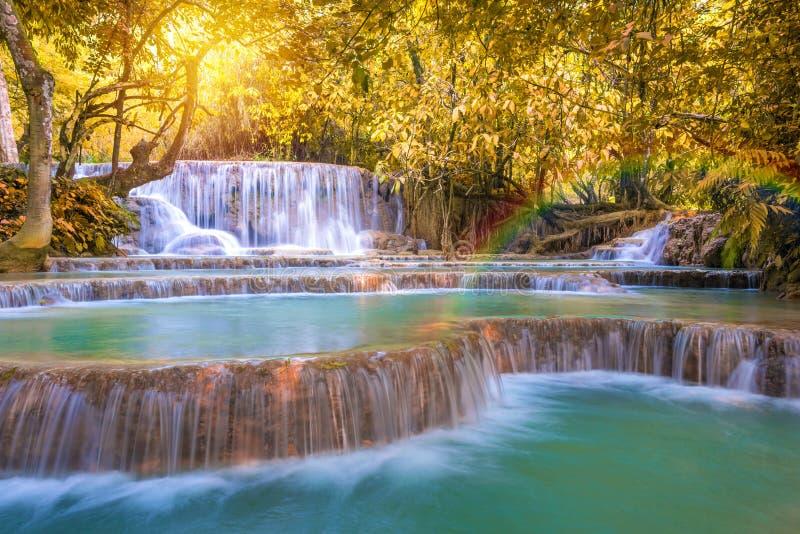 Cascata in foresta pluviale (Tat Kuang Si Waterfalls al praba di Luang immagine stock