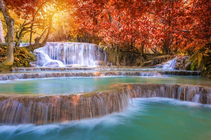 Cascata in foresta pluviale (Tat Kuang Si Waterfalls al praba di Luang fotografia stock