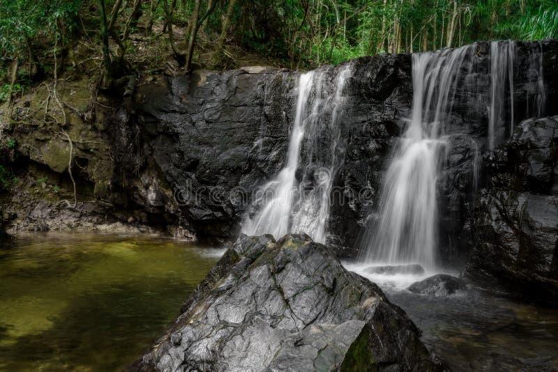 Cascata in foresta verde fotografie stock