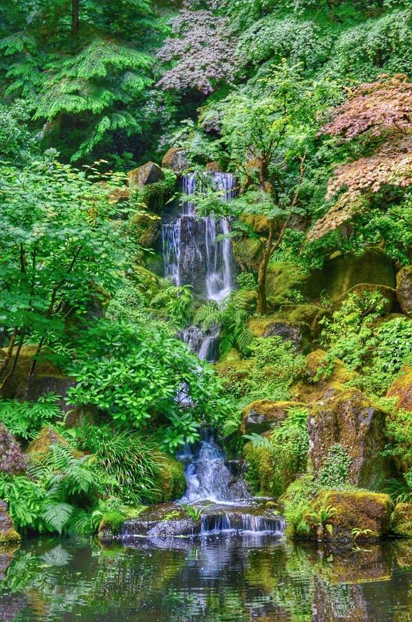 Cascata giapponese del giardino immagine stock
