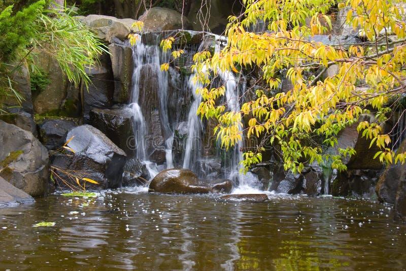 Cascata in giardino giapponese fotografia stock libera da diritti