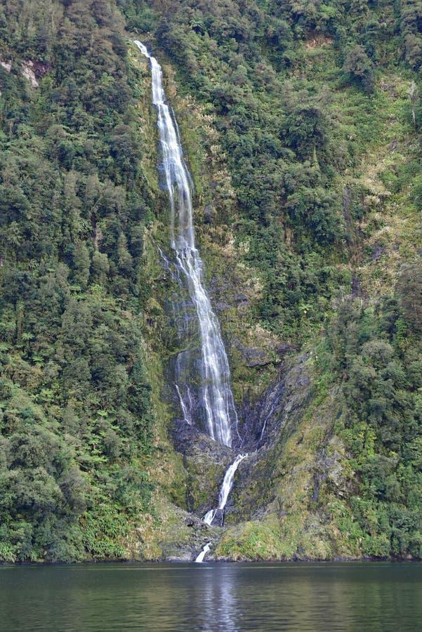 Cascata lungo le scogliere del fiordo al suono dubbioso, parco nazionale di Fiordland, Nuova Zelanda immagine stock