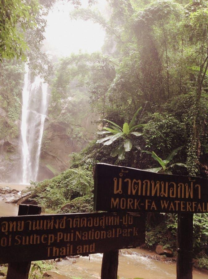 cascata Mork-fa fotografia stock libera da diritti