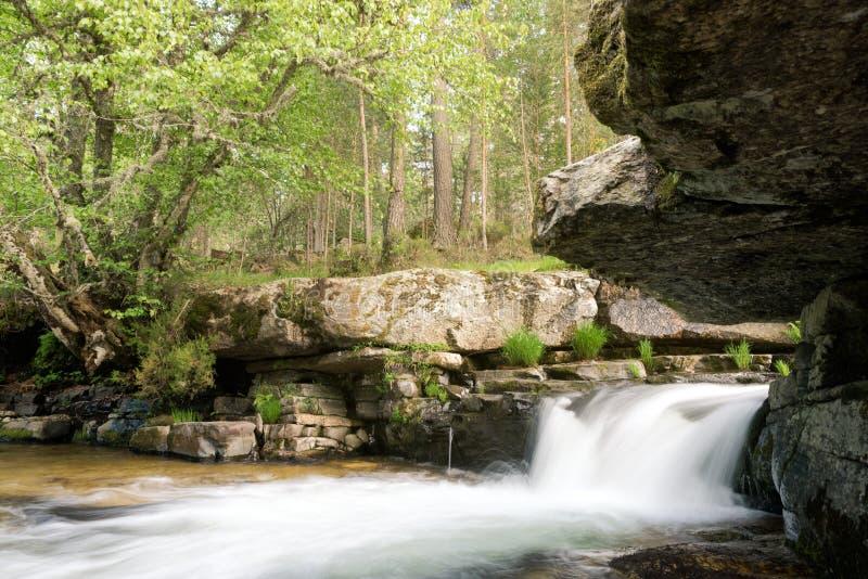 Cascata nascosta di misteri nella foresta fotografia stock