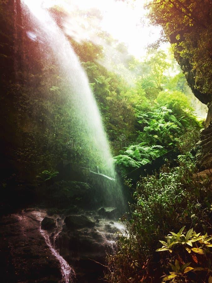 Cascata naturale di Los Tilos fotografie stock libere da diritti