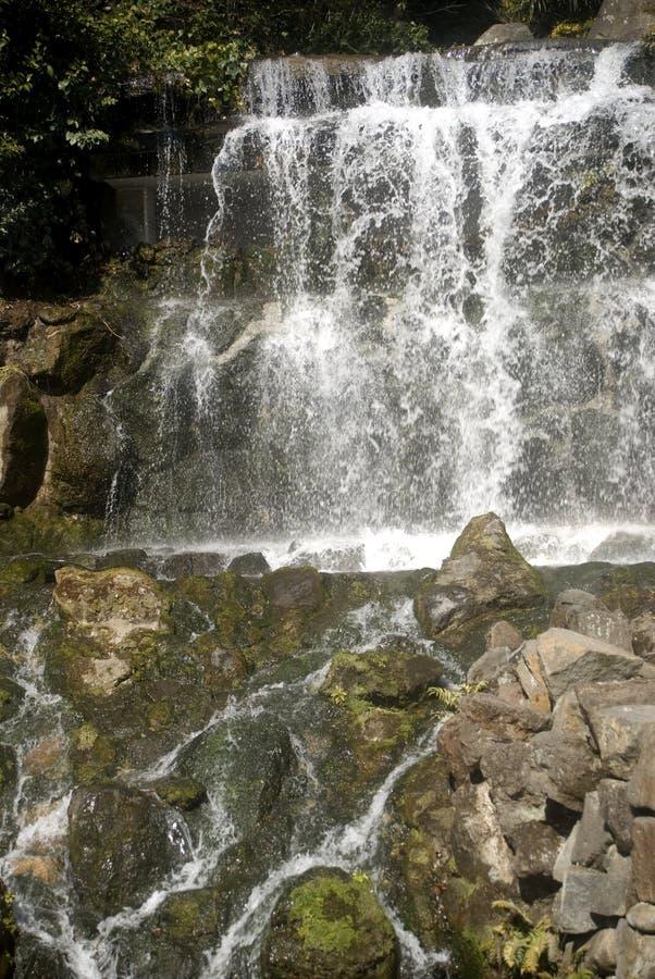 Cascata nel giardino di Chinzan-so, Tokyo, Giappone immagine stock libera da diritti