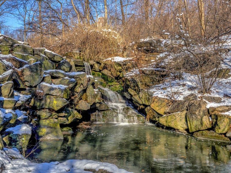 Cascata nell'inverno immagine stock