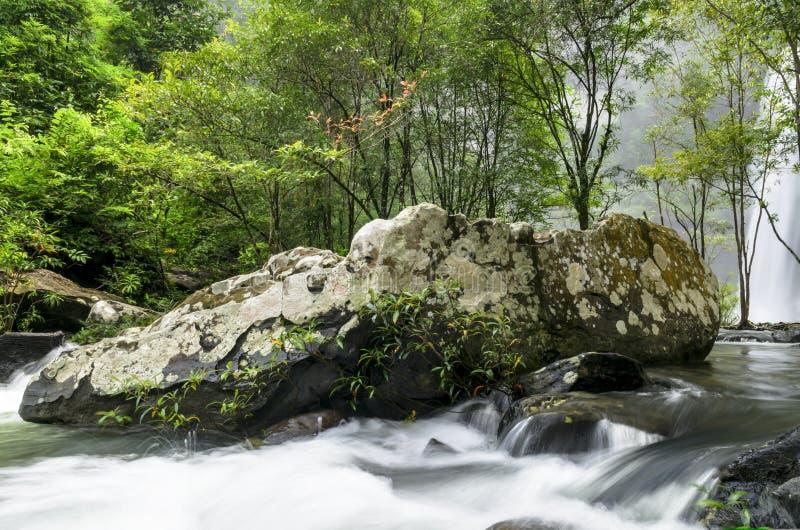 Download Cascata nella giungla fotografia stock. Immagine di giungla - 30830794