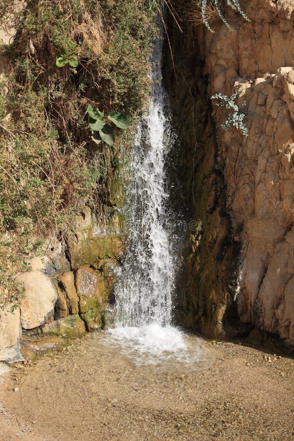 Cascata nella riserva naturale di Ein Gedi fotografie stock libere da diritti