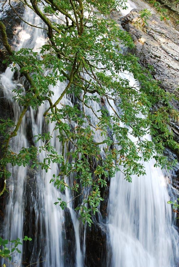Cascata nella zona delle montagne di Mourne fotografia stock