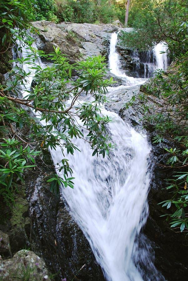 Cascata nella zona delle montagne di Mourne fotografia stock libera da diritti