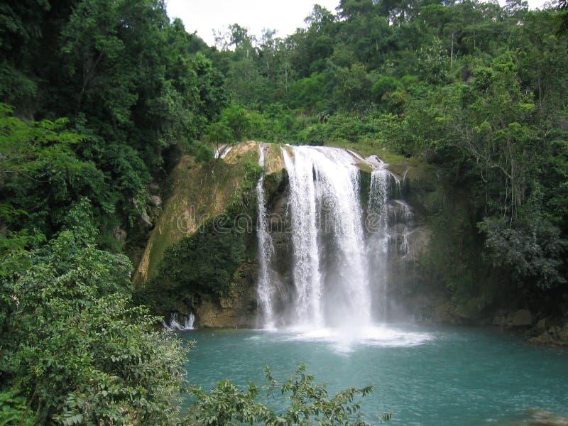 Download Cascata nelle montagne fotografia stock. Immagine di pacifico - 201182