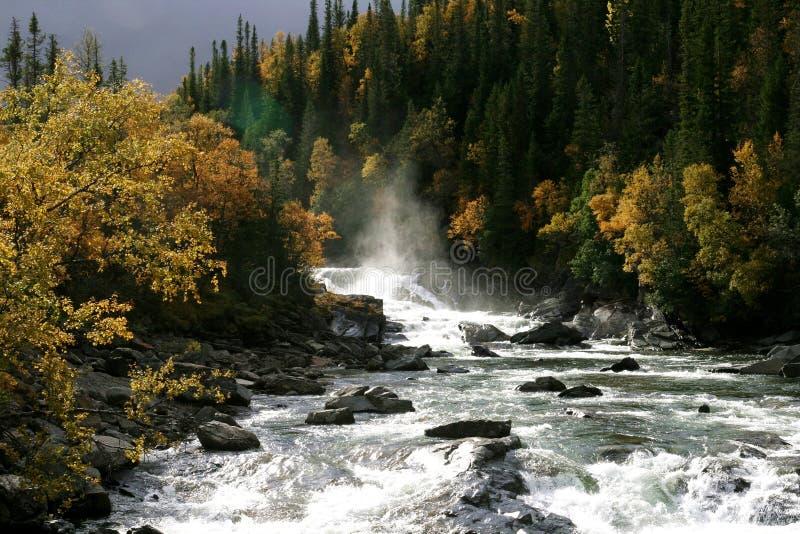 Cascata numa paisagem de outono fotos de stock