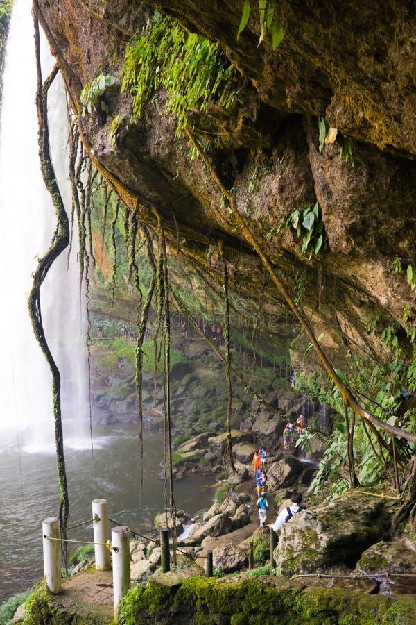 Cascata in Palenque fotografia stock