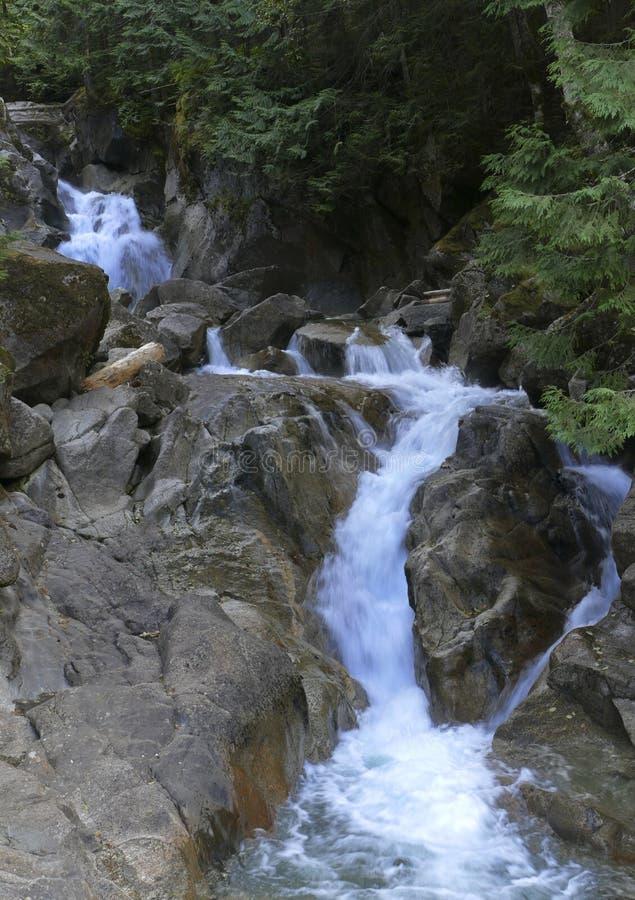 Cascata pequena da cachoeira em Rocky Stream como se apressa através da floresta imagens de stock
