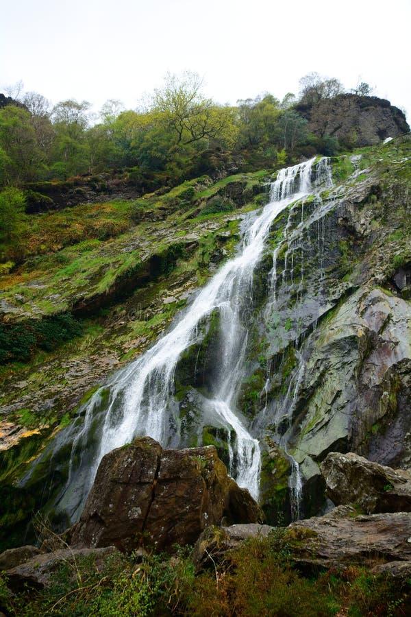 Cascata, Powerscourt, Irlanda fotografia stock libera da diritti