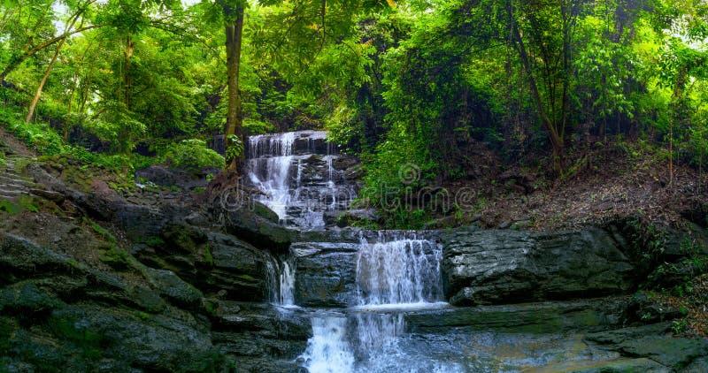 Cascata precipitante a cascata isolata della roccia in mezzo della foresta pluviale tropicale con la pietra in pieno di Moss Unde fotografie stock libere da diritti