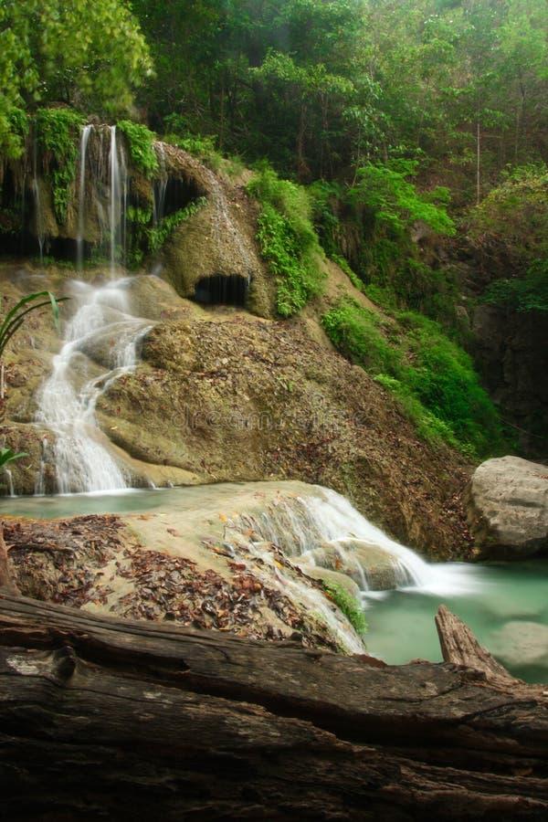 Cascata profonda della foresta in Erawan Kanchanaburi, Tailandia immagini stock