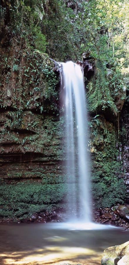 Cascata profonda della giungla immagini stock