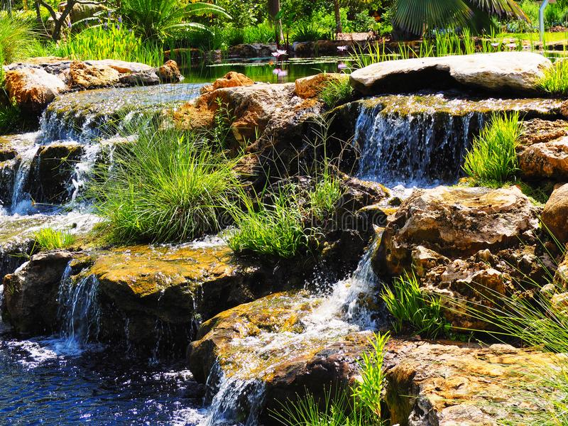 Cascata rocciosa esotica nel Messico immagine stock