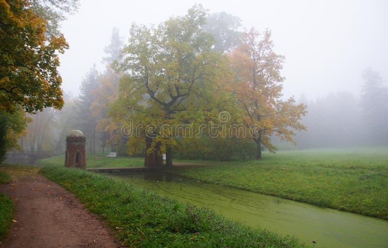 Cascata rossa e mattina nebbiosa di autunno immagine stock