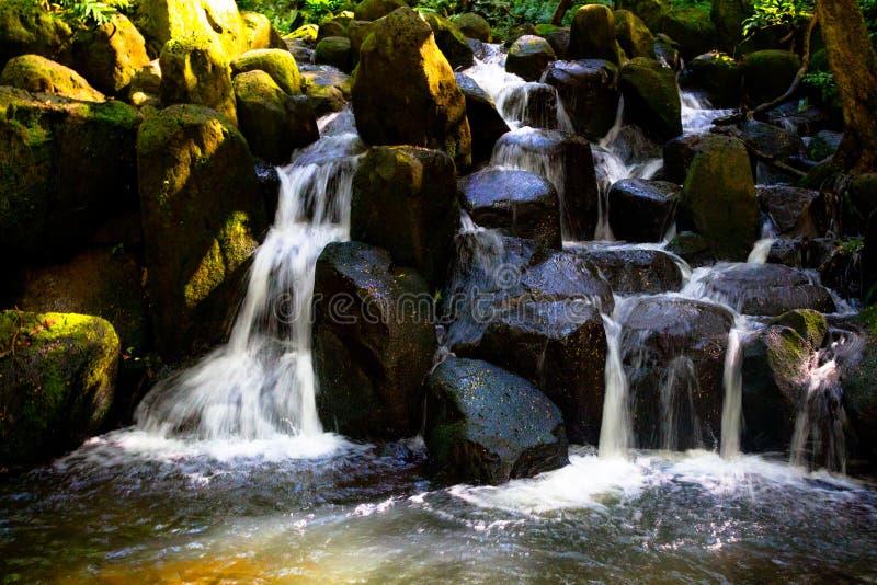 Cascata su Kauai fotografia stock