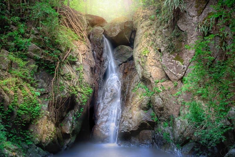 Cascata su un pendio di montagna in cascata tropicale della foresta profonda in foresta pluviale immagini stock libere da diritti