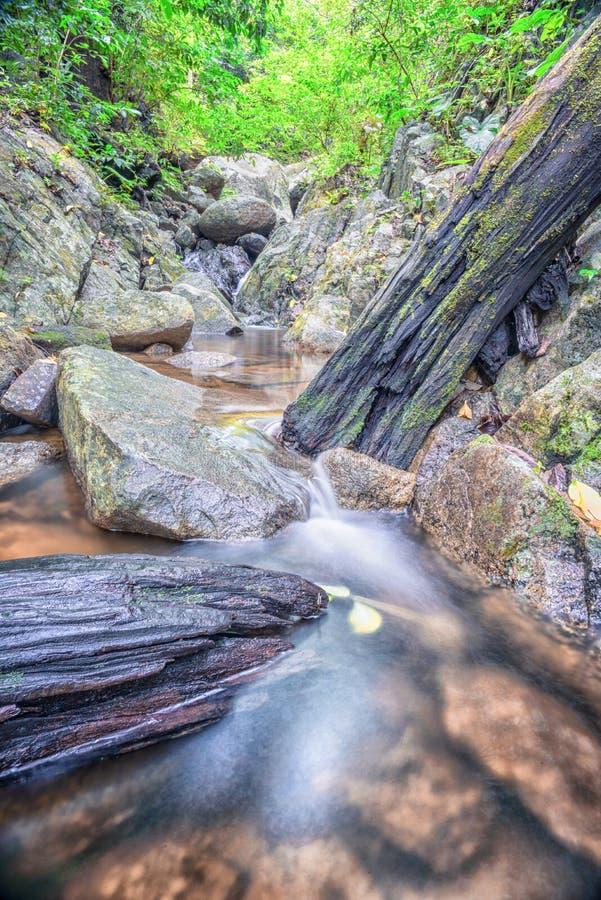 Cascata su un pendio di montagna in foresta profonda fotografia stock libera da diritti