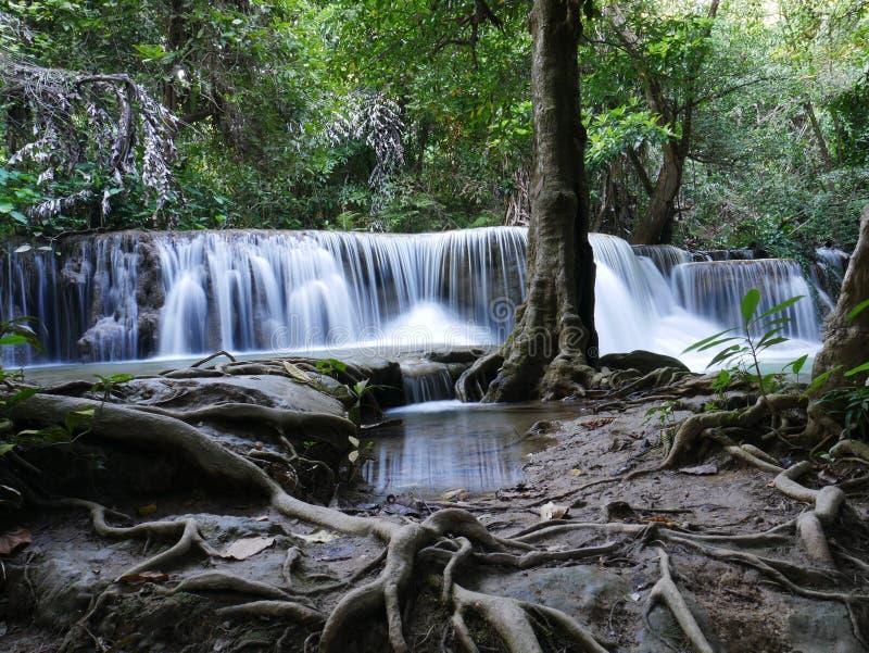 Cascata in Tailandia Natura di vista del paesaggio fotografia stock