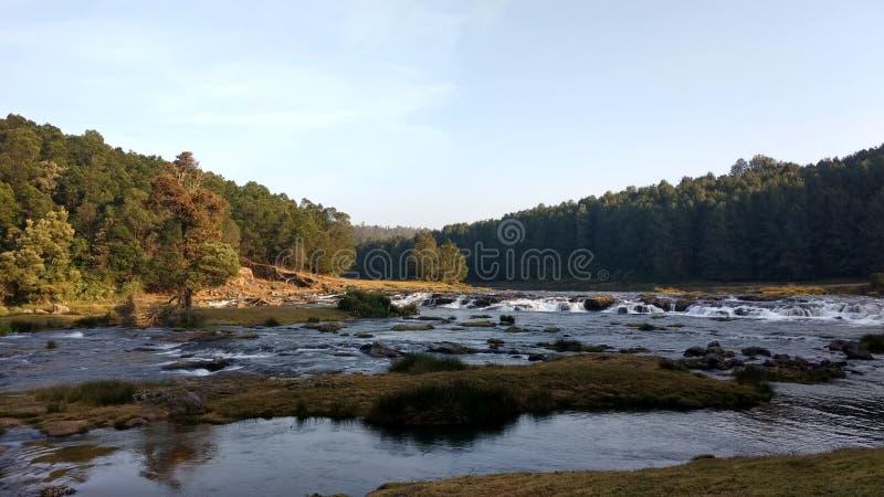 Cascata Tamil Nadu ooty India di Pyakra fotografia stock