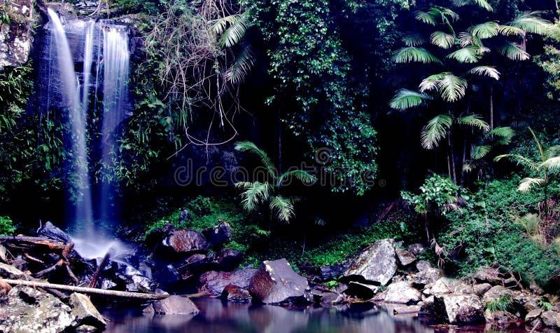Cascata tropicale immagine stock libera da diritti