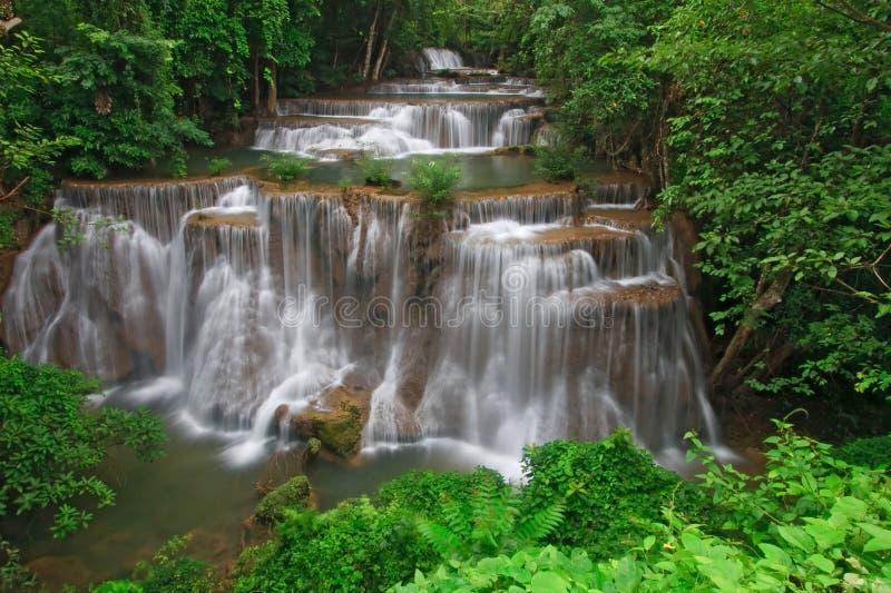 Cascata tropicale della foresta pluviale fotografia stock