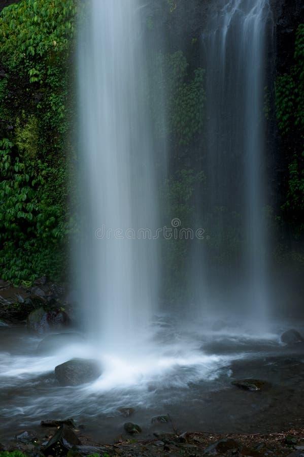 Cascata tropicale esotica in foresta pluviale fotografia stock
