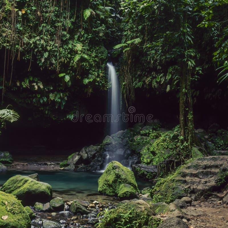 Cascata verde smeraldo del raggruppamento fotografie stock libere da diritti