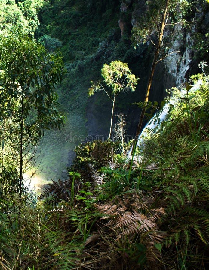 Cascata vicino a Manizales - la Colombia immagine stock libera da diritti