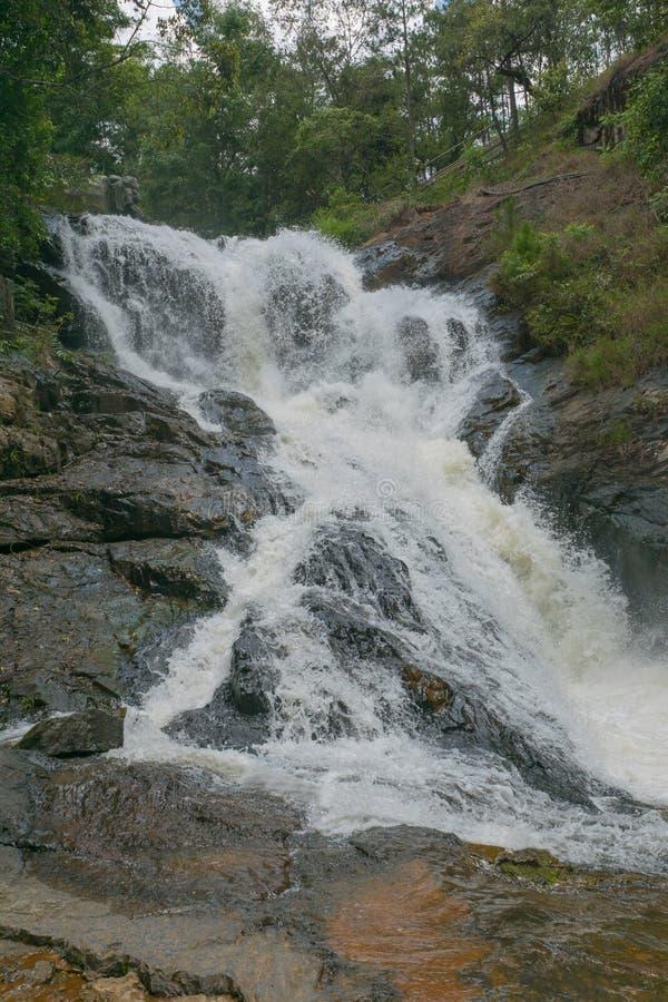 Cascatas da cachoeira na floresta selvagem imagens de stock