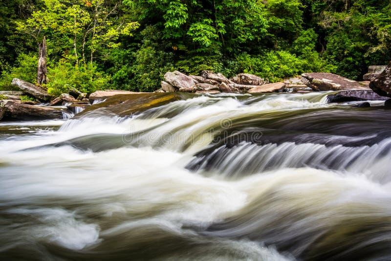 Cascatas em pouco rio, na floresta do estado de Du Pont, North Carolina imagem de stock royalty free