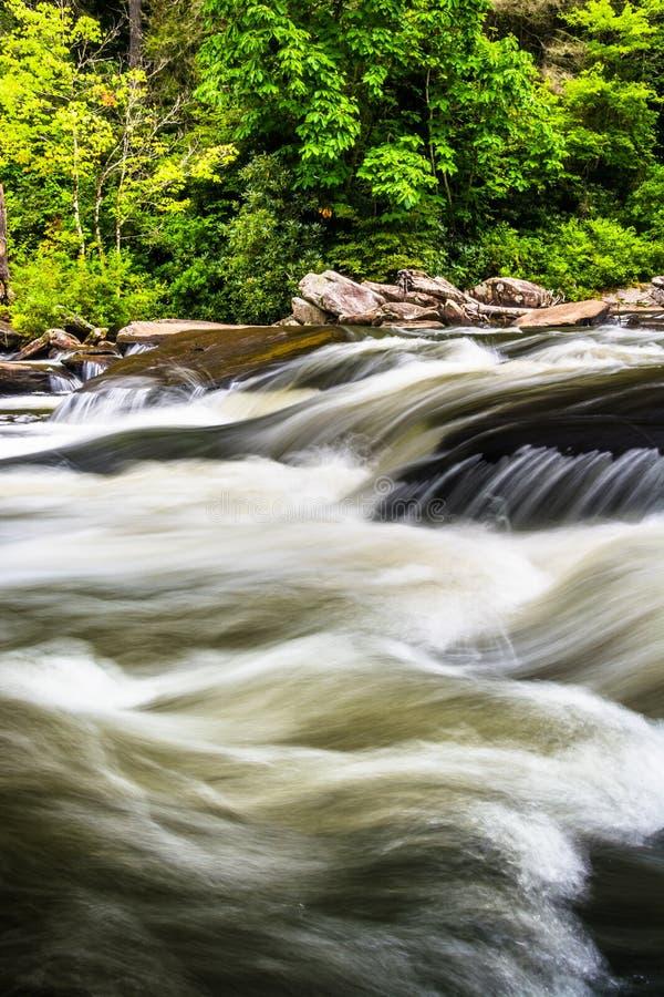 Cascatas em pouco rio, na floresta do estado de Du Pont, North Carolina fotos de stock