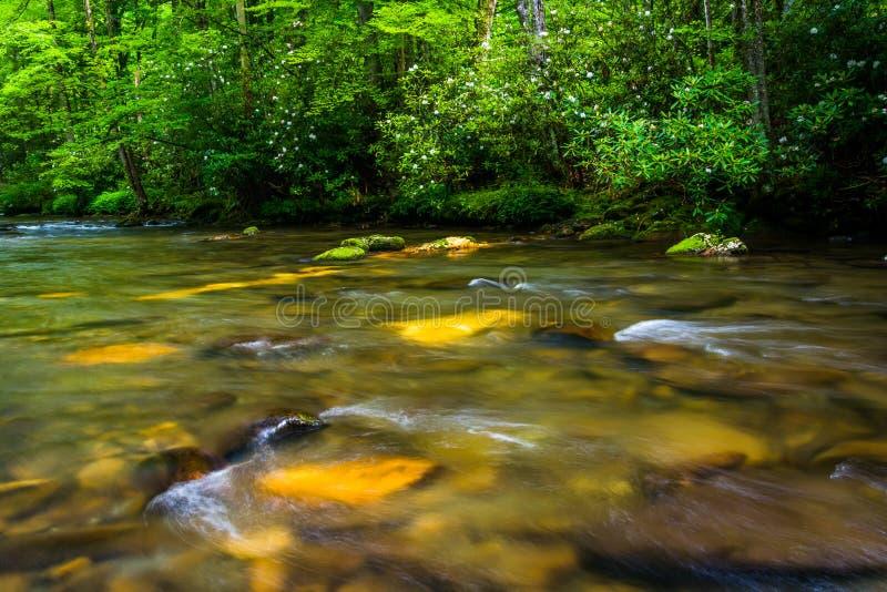 Cascatas no rio de Oconaluftee fotografia de stock royalty free