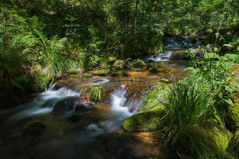 Cascate di Allerheiligen nella foresta nera immagine stock