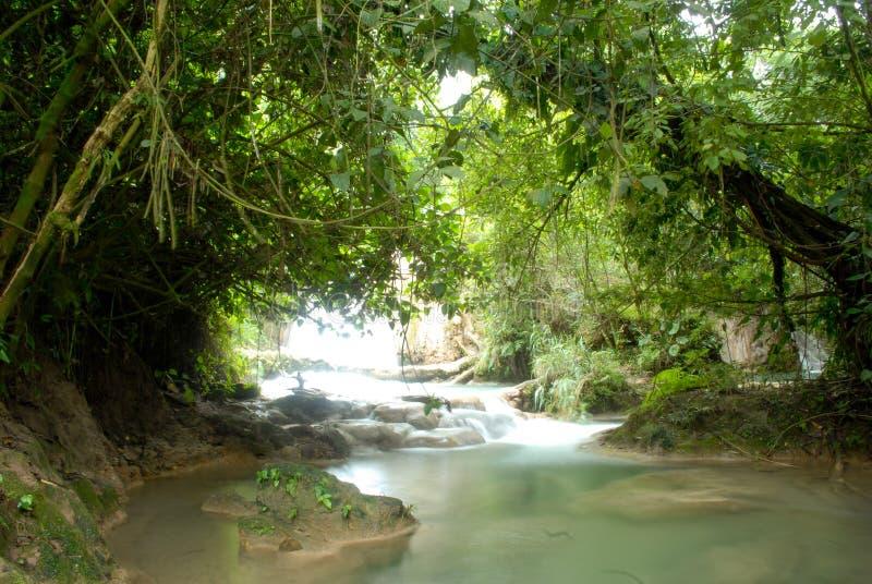 Cascate di Cascadas de Agua Azul Agua Azul fotografia stock libera da diritti