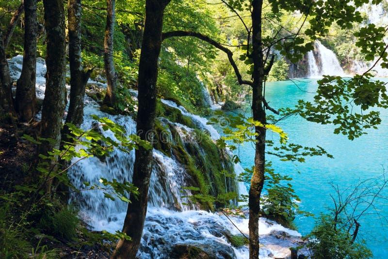 Cascate di estate in Plitvice (Croatia). immagini stock