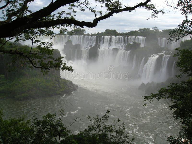 Cascate di Iguazu, Argentina fotografie stock libere da diritti