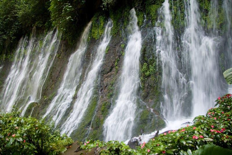 Cascate di Juayua fotografie stock libere da diritti