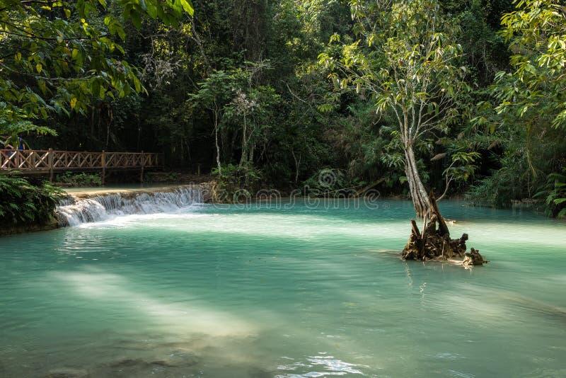 Cascate di Tat Kuang Si vicino a Luang Prabang, Laos fotografia stock