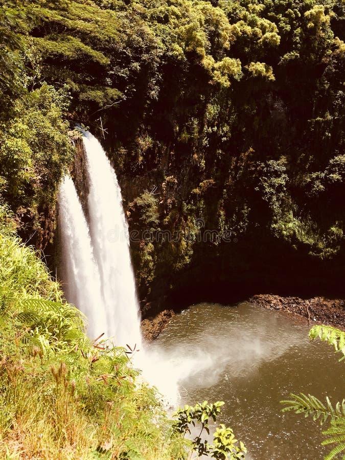 Cascate hawaiane fotografie stock libere da diritti