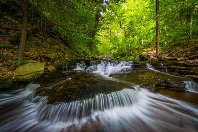 Cascate lungo Glen Leigh in Ricketts Glen State Park, Pensilvania fotografie stock