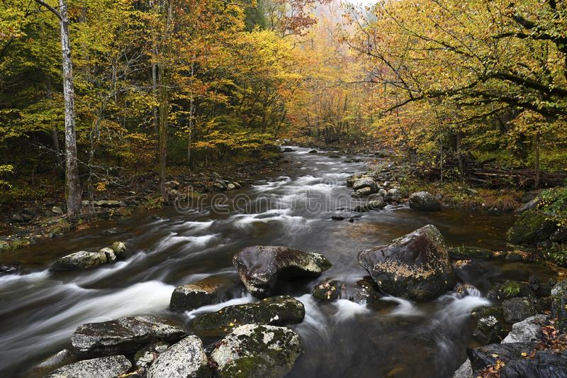 Cascate nel fiume Little Pigeon a Great Smoky Mountains immagine stock